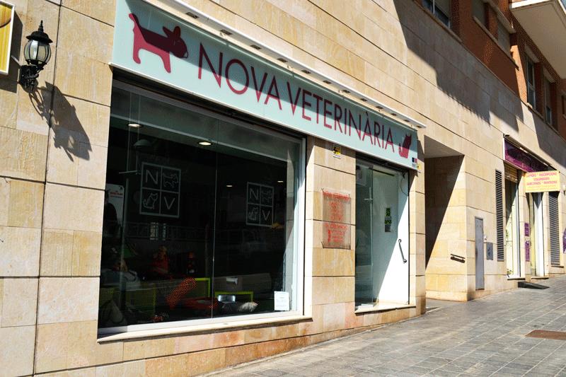 Benvinguts a Novaveterinària